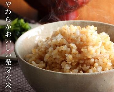 発芽玄米売ってる場所は?【通販なら値段が安くて人気 ランキング】ダイエットにオススメ